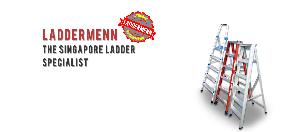 the singapore ladder specialist