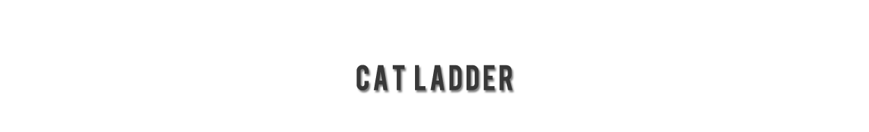 Laddermenn Ladders | L M Metals (S) Pte Ltd | Cat LADDERS